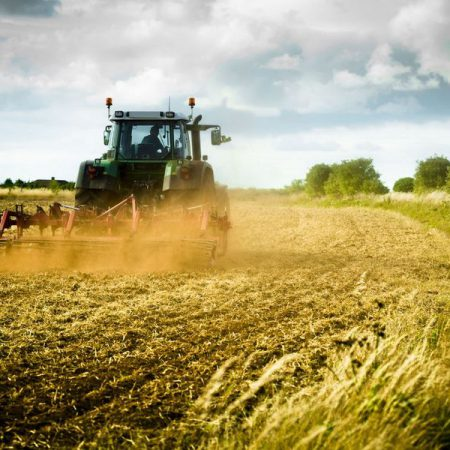 Mezőgazdasági technikus