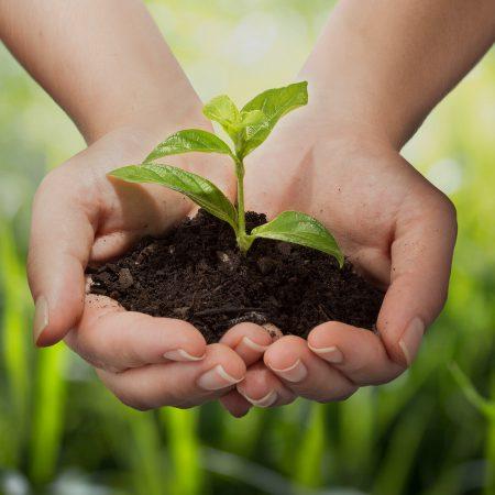 Környezetvédelmi ágazat Szakgimnázium