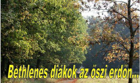 Bethlenesek az őszi erdőn…